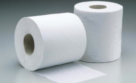 Dutch Initiative To Recycle Cellulose From Toilet Paper In Wastewater