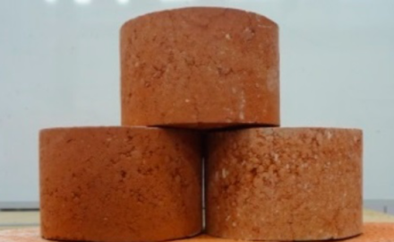 Biosolid Waste Can Now Be Utilized to Make Bricks